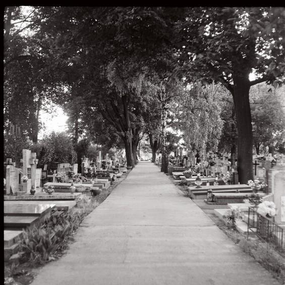 cimetière polonais