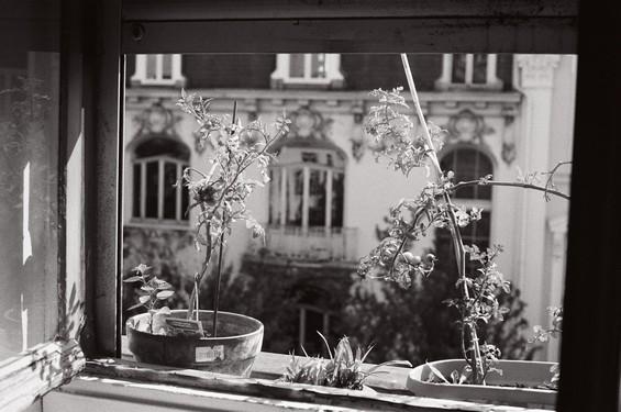 Rebord de fenêtre