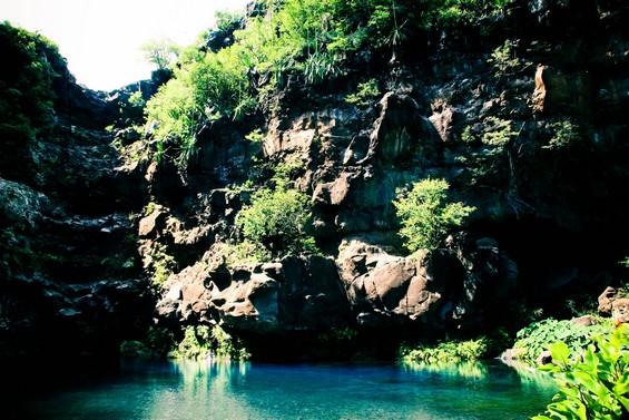 bassin des Aigrettes