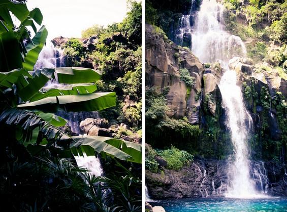 cascades et palmiers