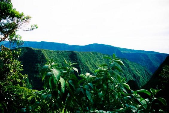 vue sur la vallée verdoyante !