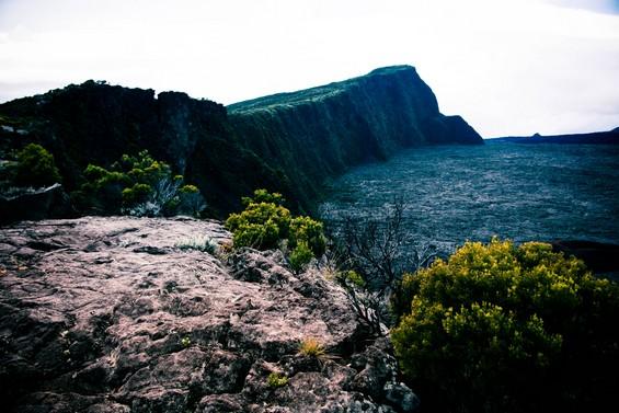 sur les roches du Piton de la Fournaise