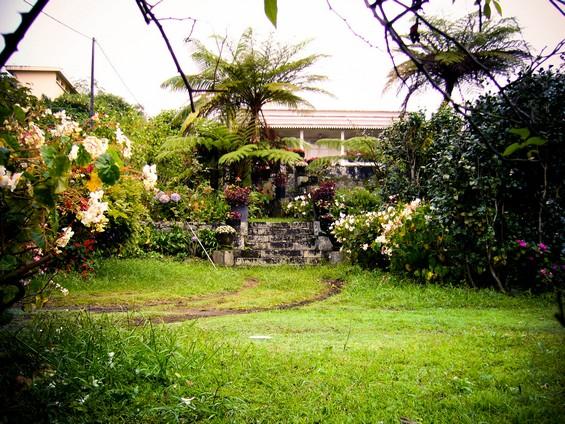 jardin d'une maison réunionnaise