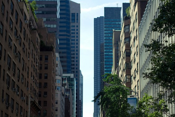 Le long des avenues new-yorkaises