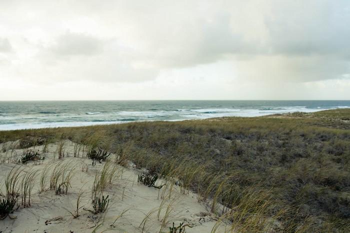 Le Cap Ferret, au bord de l'Océan Atlantique