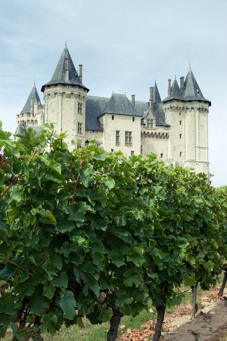 vue depuis les vignes du chateau de Saumur