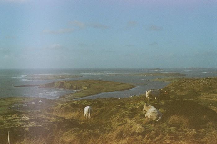 l'Irlande (1)