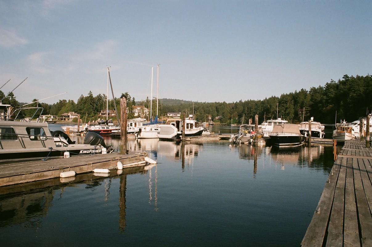 Pacific Northwest : Postcard from San Juan Island & ses orques !