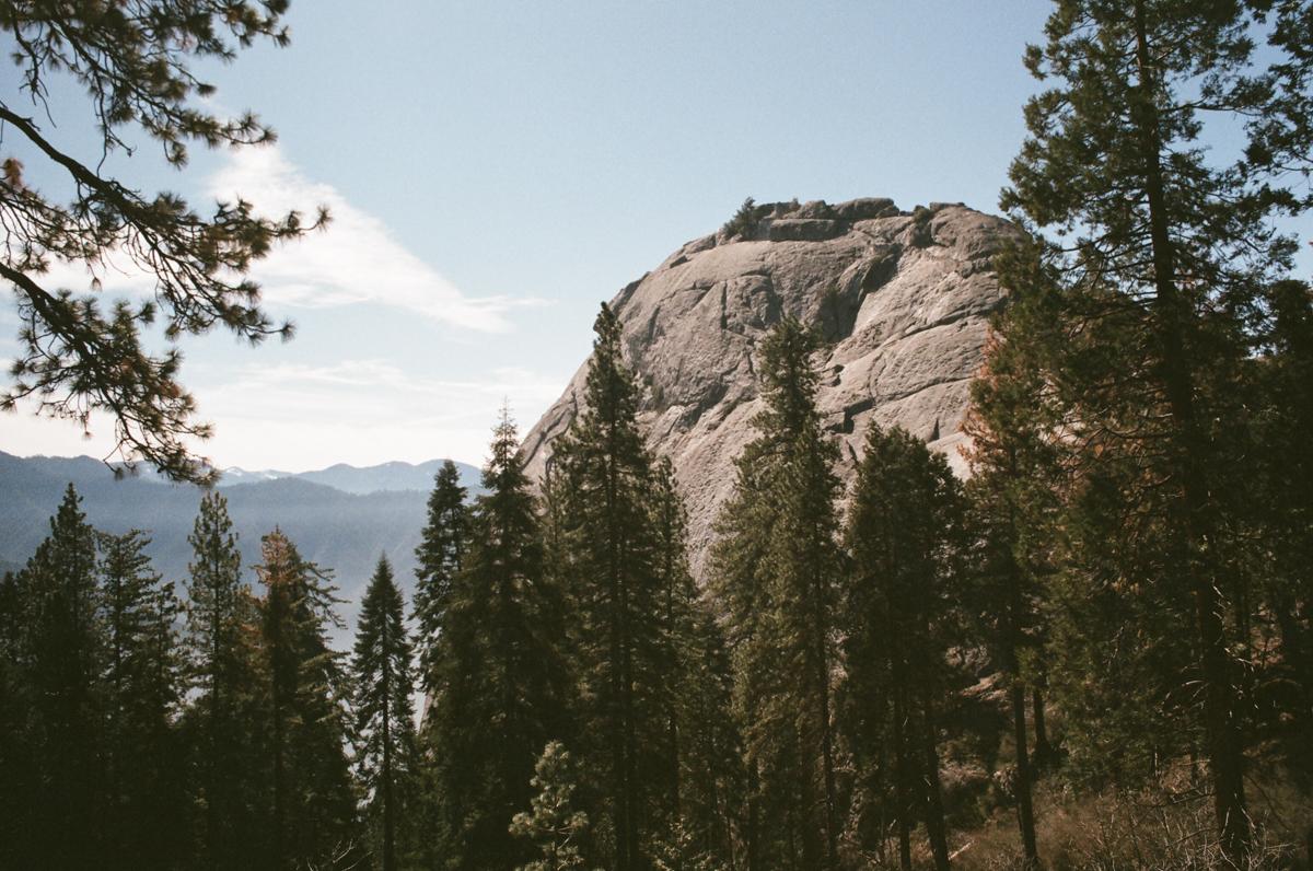 Moro Rock, Sequoia