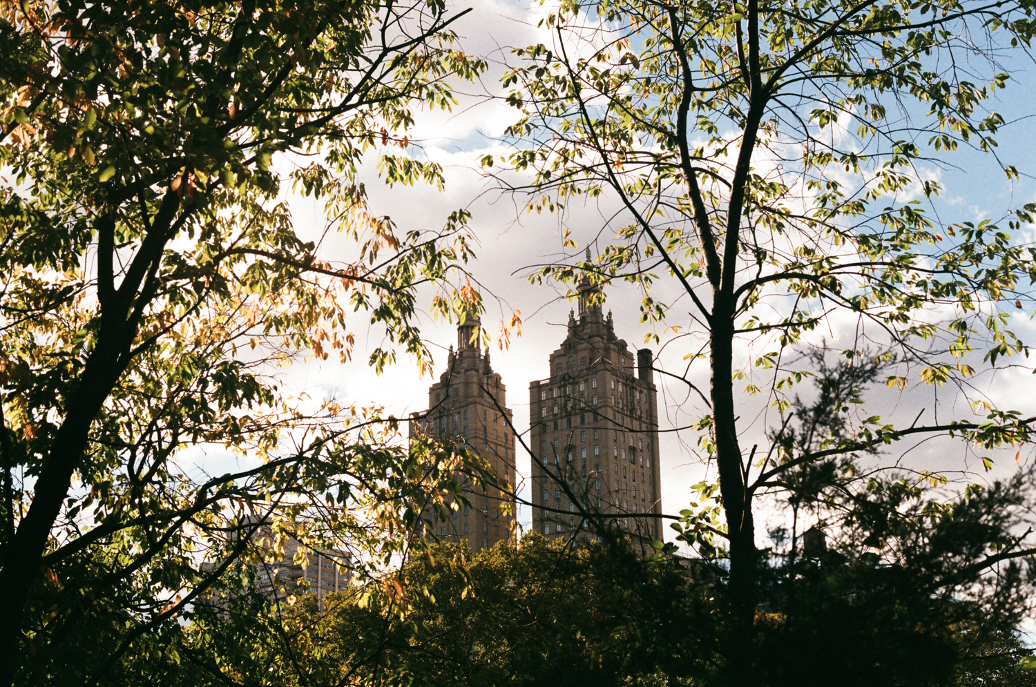 Escapade New-yorkaise, Central Park