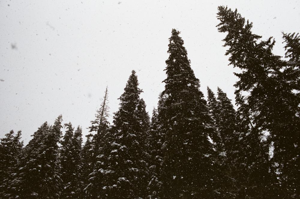 North Cascades National Park, WA