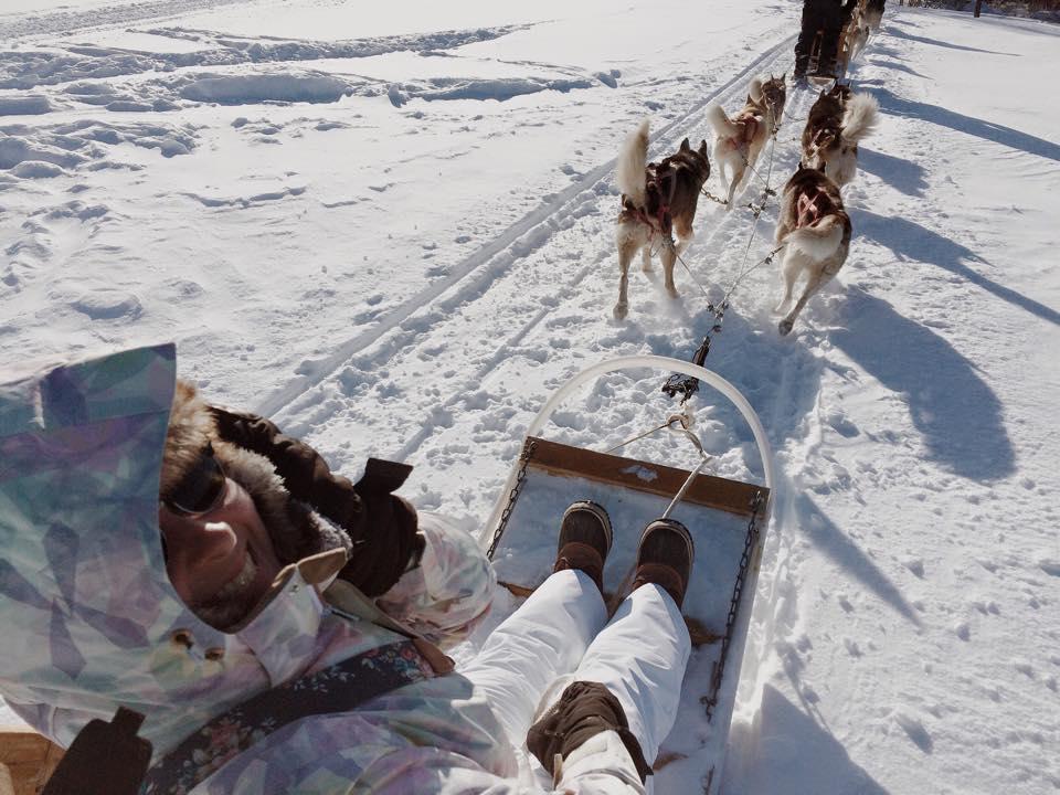 Escapade en chiens de traineau, Québec