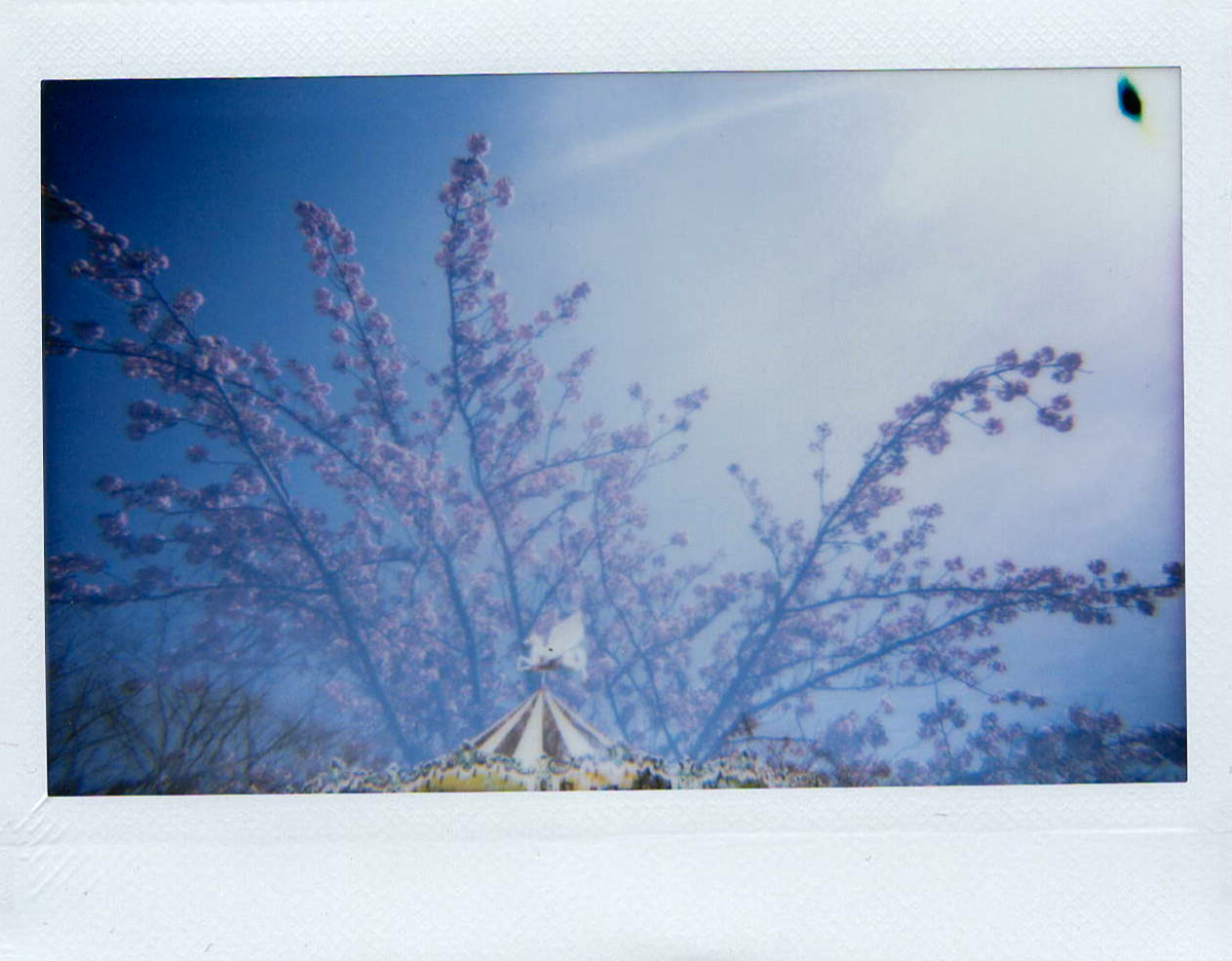 Test du Lomo'Instant Wide