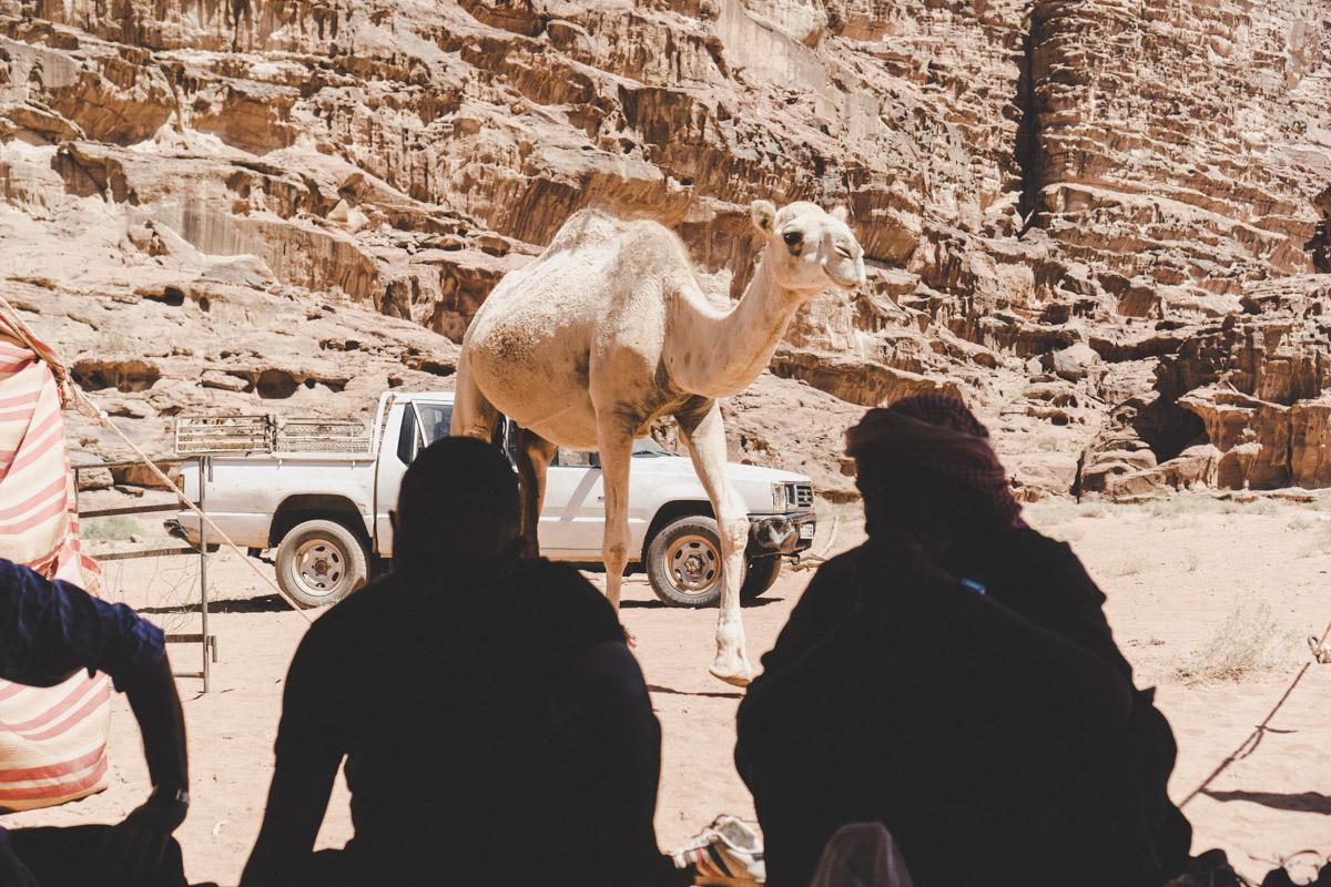 Dormir en tente avec les Bédouins du Wadi Rum