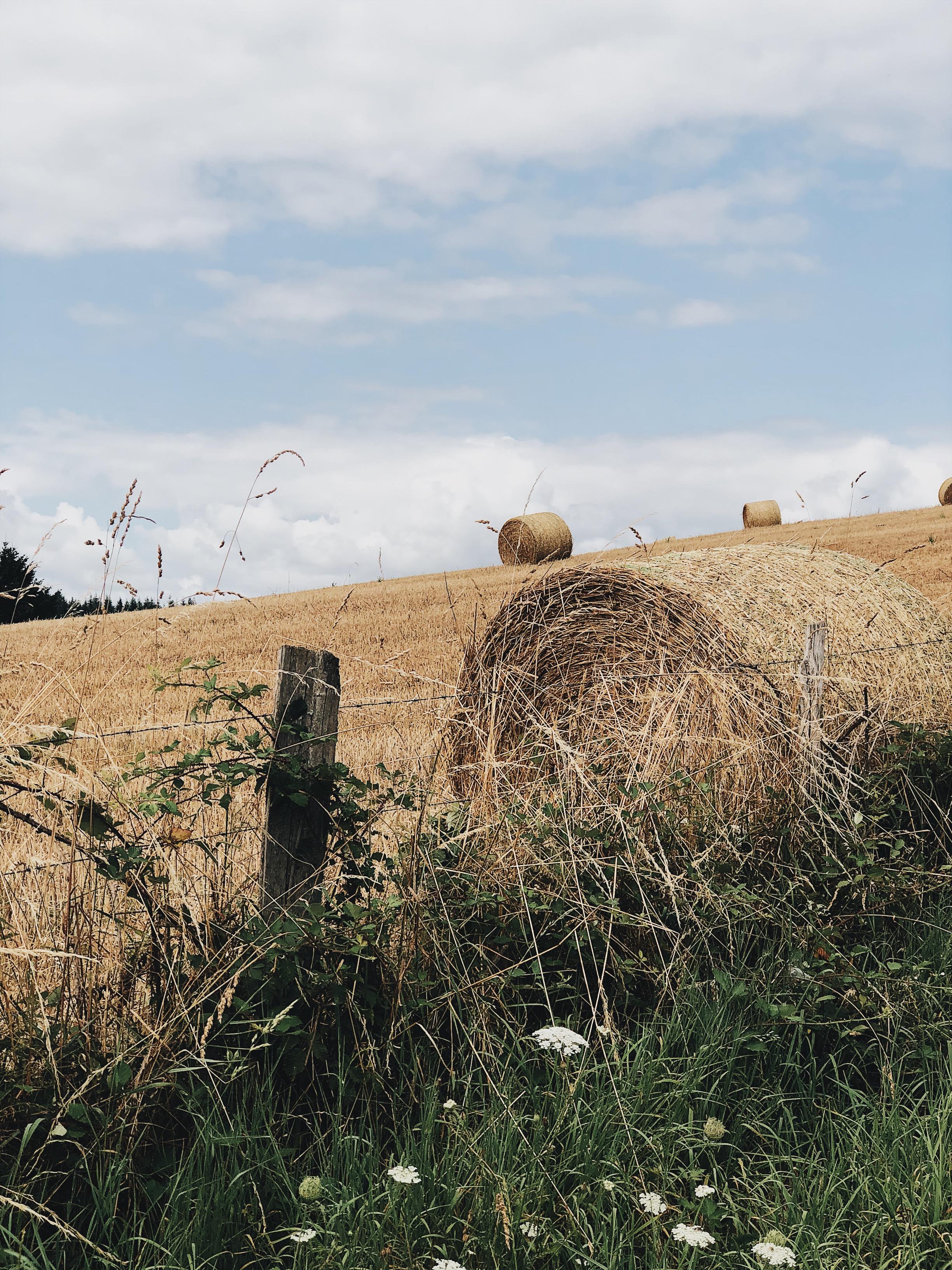 Week-end en Corrèze, Chamberet