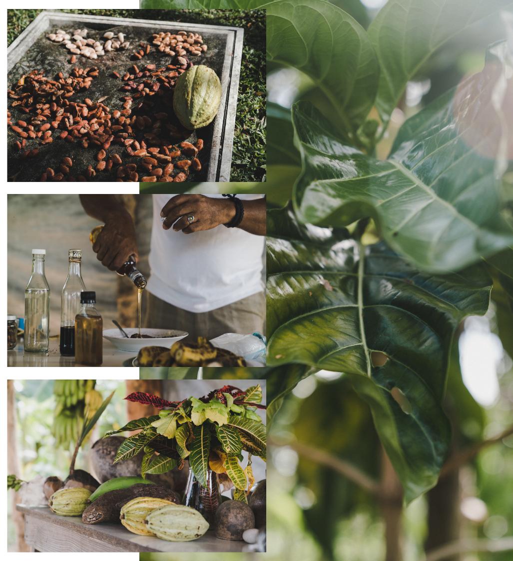 Voyage en République Dominicaine, balade en quad Flora Tours